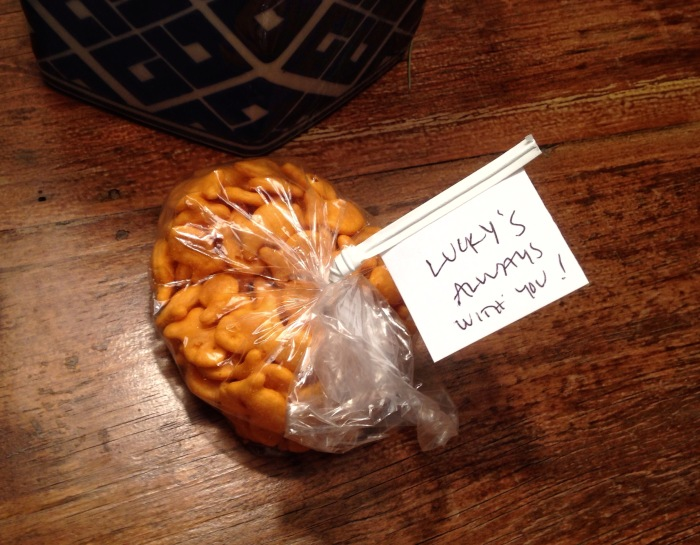 luck-blog-goldfish