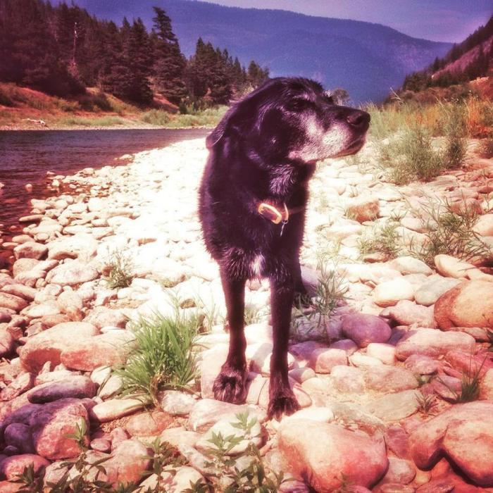 luck-blog-river